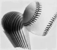 Baseball_bat (2)