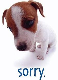Sorry_sad puppy