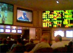 LV sportsbook May09