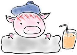 Sick_pig_cartoon__ollie_crafoord
