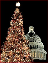 Capitol hill christmas tree (2)