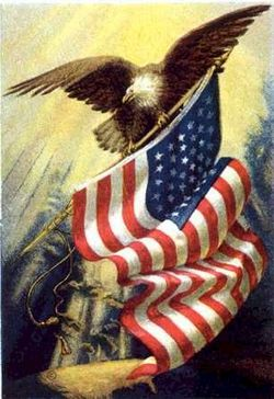 Eagle-on-us-flag