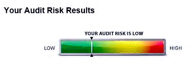 Audit risk turbotax graphic