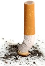 Cigarette_butt (2)