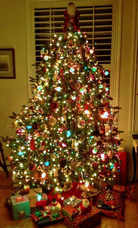 Christmas tree 2012-1a