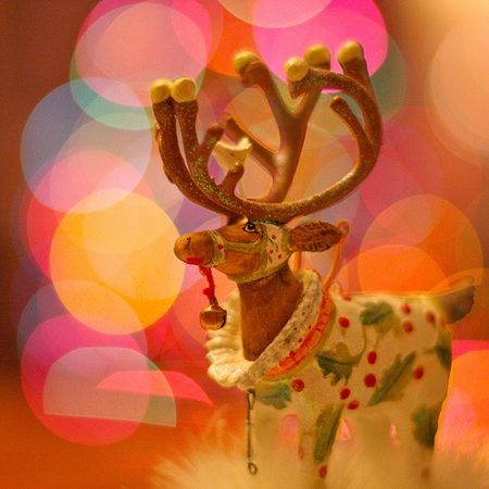 Reindeer decoration photo by Kevin Dooley via Flickr Creative Commons
