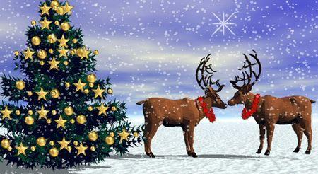 Reindeer love courtesy Brothersoft Windows software