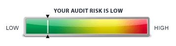 Audit risk for our 2012 tax return