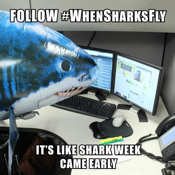 WeiserMazar WhenSharksFly hashtag Twitter