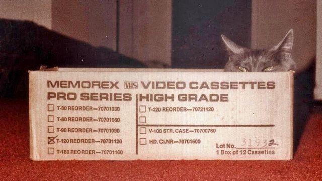 Z in a box 1984