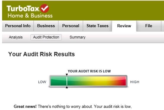 2013 tax return audit risk