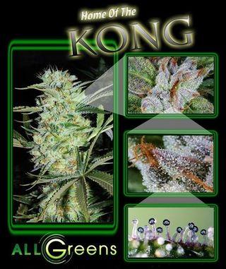 AllGreens medical marijuana poster