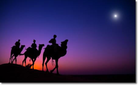 Christmas magi three kings camels star