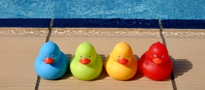 Rubber Ducks by artur84 via FreeDigitalPhotos-dot-net