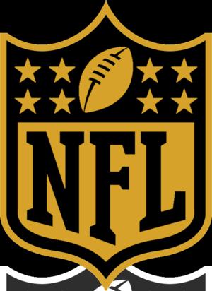 NFL 2015 season 50th Super Bowl shield