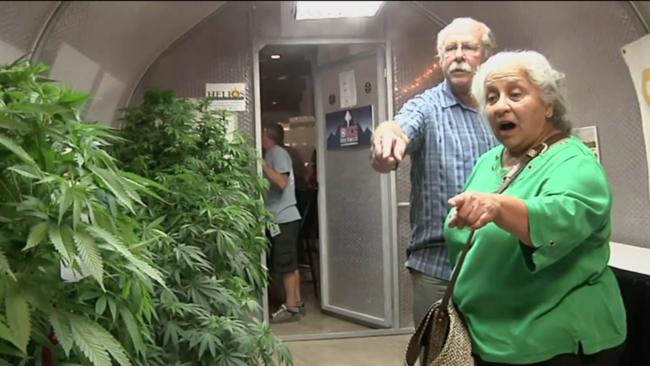 Visitors to cannabis house at Oregon State Fair_AP video screenshot