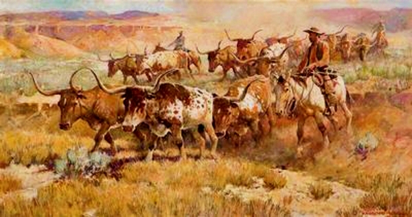 Texas-longhorn-cattle-drive-roundup