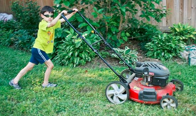 Young lawn mower by woodleywonderworks via Flickr CC