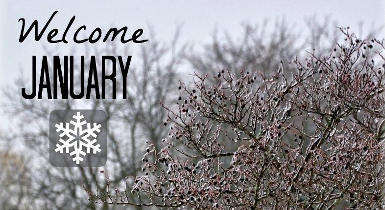 Welcome-January courtesy Pagety.com