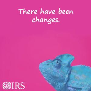 IRS chameleon_IMG_1967