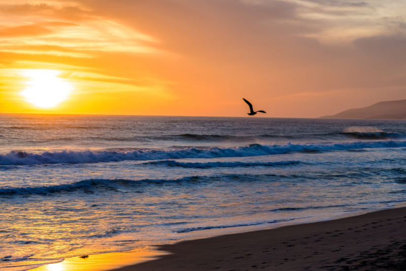 Zuma Beach_Malibu California_Alex Beattie via Flickr CC
