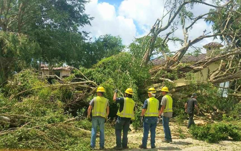 Utility workers cleaning up storm damage_Utility Workers Union of America AFL-CIO via Facebook