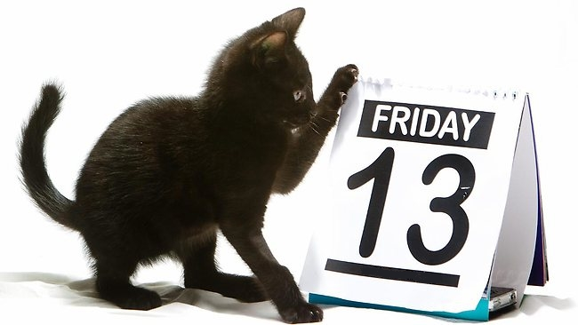 Friday the 13th black cat kitten calendar page