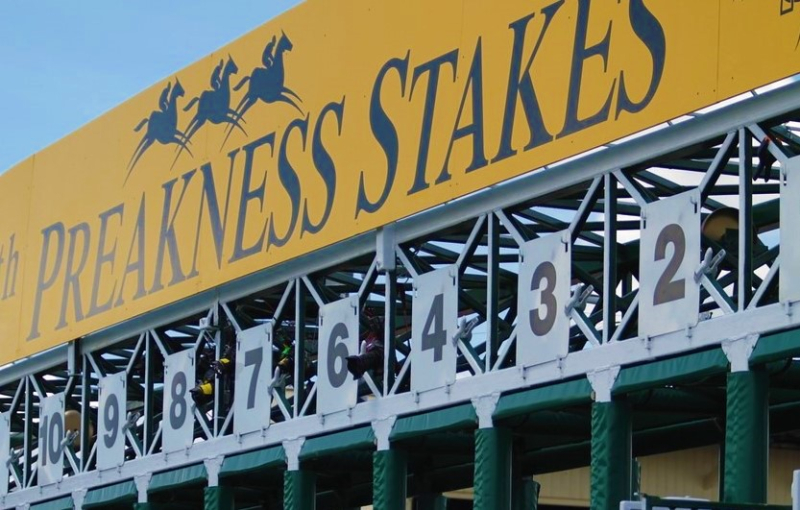 Preakness Stakes gate 2011 race by Fisherga via Flickr CC_cropped