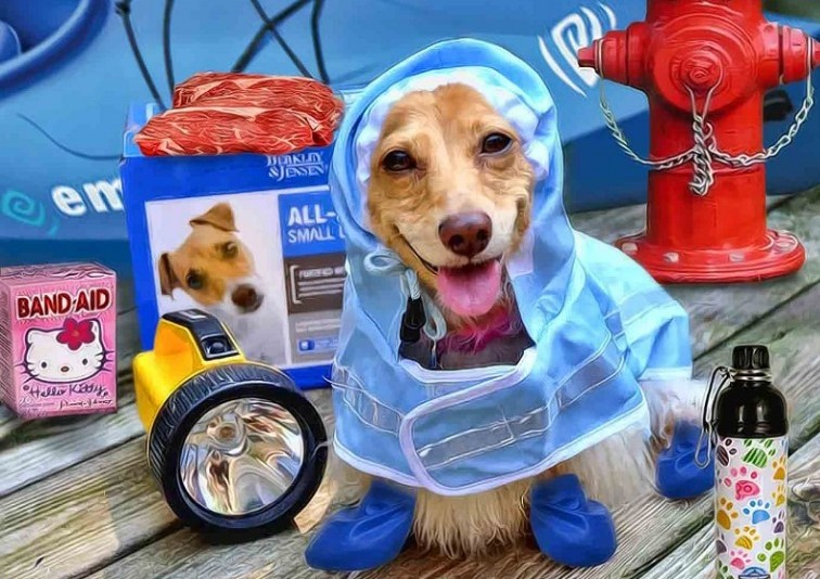 Dog-hurricane-ready_freakingnews-dot-com_cropped