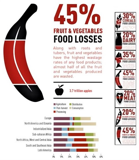 Food losses fruit and combo column_Food and Agriculture Organization of the United Nations