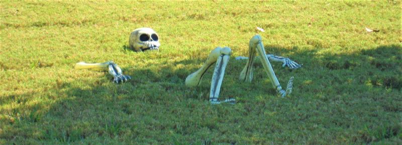 Skeleton in neighbors yard