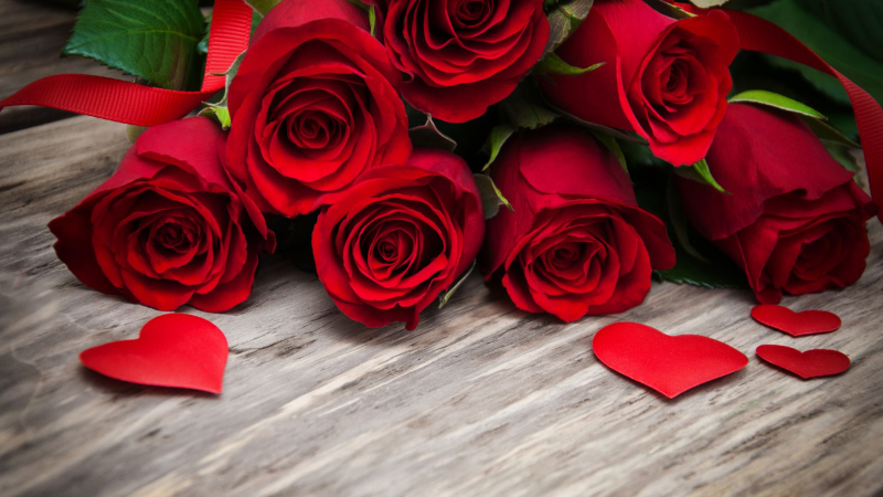 Valentines Day February 14 roses and hearts_WallpapersHome