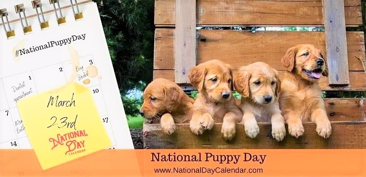 National-Puppy-Day-March-23_National-Day-Calendar