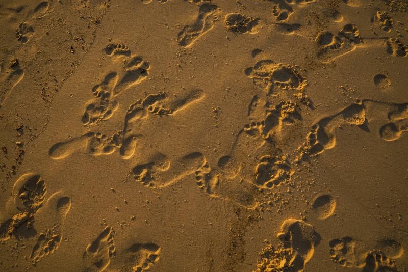 Photo-of-footprints-on-sand-1656671_Wendy-Wei_Pexels