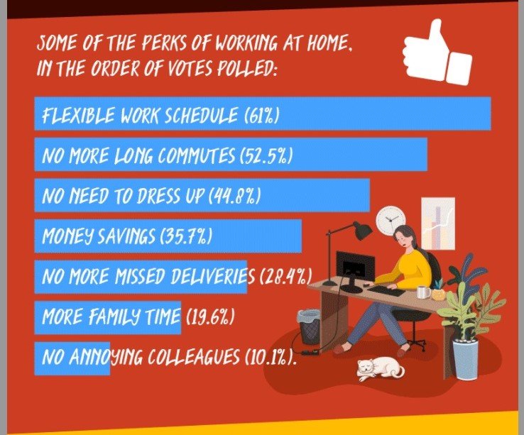 Work from home pros infographic excerpt1