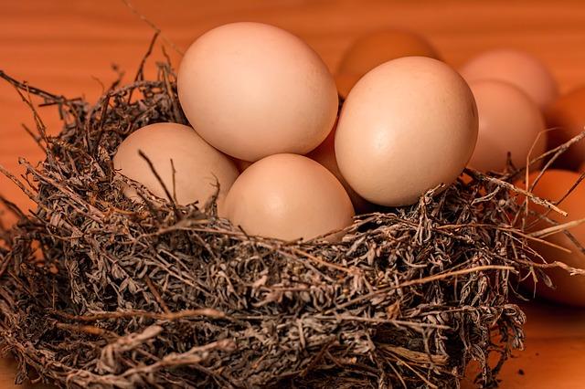 Full nest egg