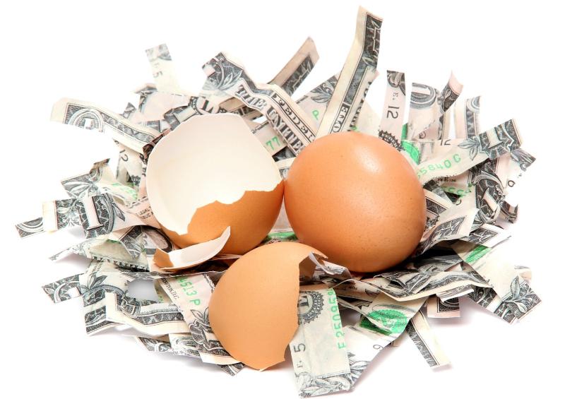 Broken-nest-egg