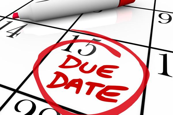 Calendar 15th circled due date deadline