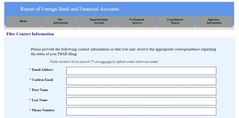 FinCEN FBAR e-filing screen