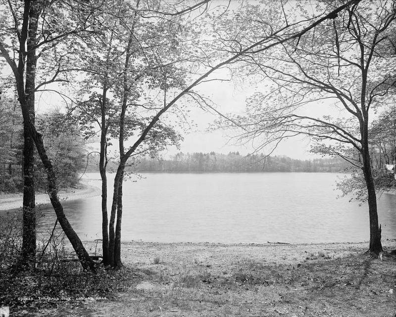 Walden_Pond_Thoreau-Cove_Concord-Massachusetts_WikimediaCommons