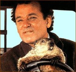 Bill_Murray_Groundhog_Day