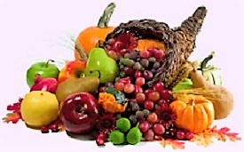 November cornucopia of plenty