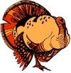 Small_turkey