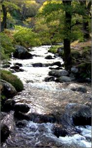 Mountain_stream2_2