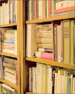 Big_bookshelf_2