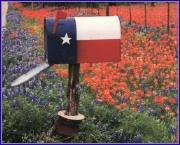Mailbox_texas_and_wildlfowers_2