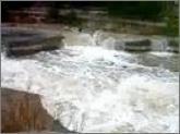 Bull_creek_2