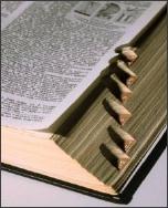 Dictionary_3_1
